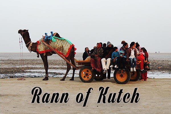 Rann of Kutch Gurajat