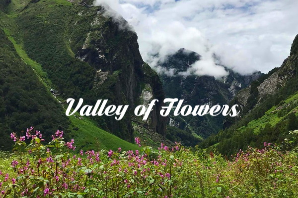 Valley of Flowers, Uttarkhand, India
